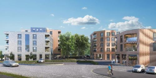 An image relating to Hatfield regeneration continues at pace