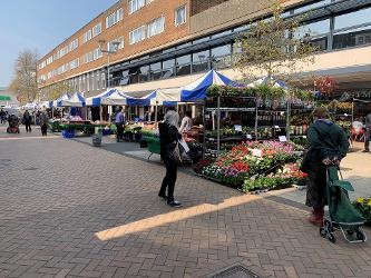 An image relating to Hatfield markets to reopen