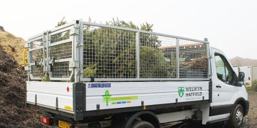 An image relating to  Hospice Christmas tree recycling scheme was tree-mendous success