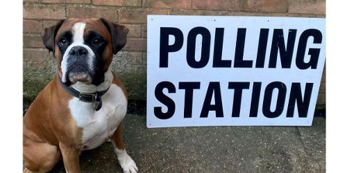 An image relating to Polling station greeters wanted for May 2021 elections