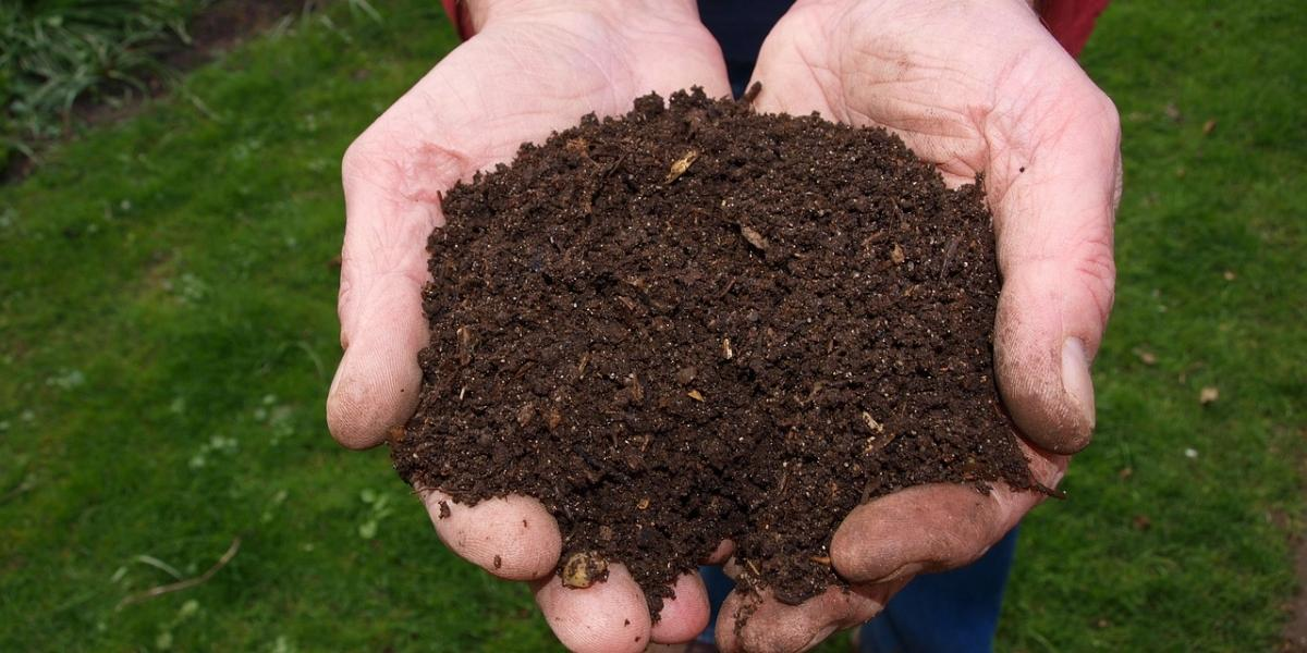 Compost being held
