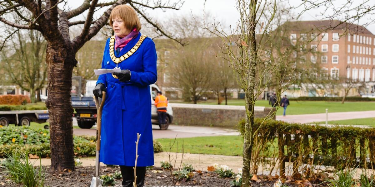 Commemorative tree planting in Welwyn Garden City