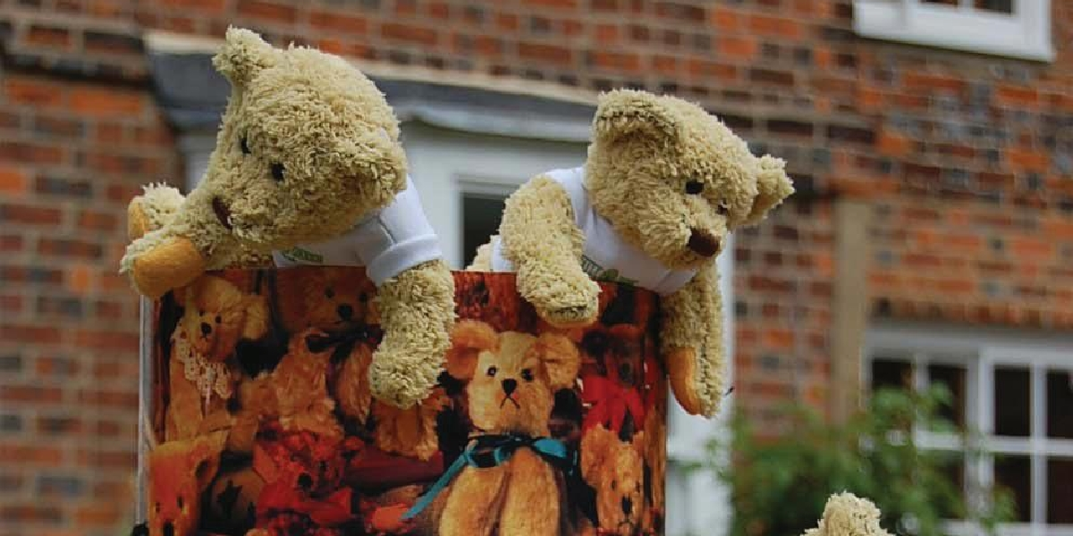 Image representing Teddy Bear Fun Day
